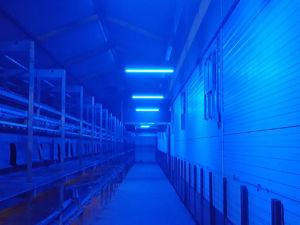 Multicolor Led-verlichting | Blauw | Veko Ventilatie B.V.