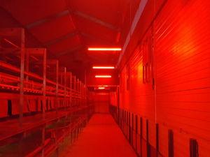 MULTICOLOR LED-VERLICHTING | Rood | Veko Ventilatie B.V.